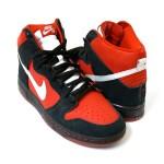 Nike SB 601